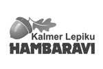 Kalmer Lepiku Hambaravi